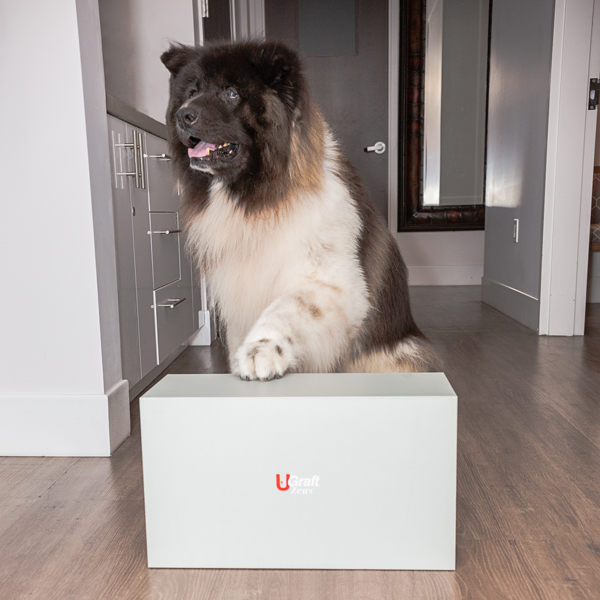 Dr.UGraft® Zeus FUE Hair Transplant System with Zeus holding